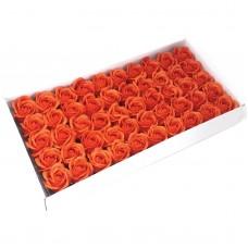 Muilo rožė. Spalva ryškiai oranžinė