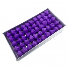 Muilo tulpės. Spalva violetinė
