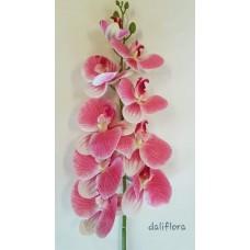 Dirbtinė orchidėja. Spalva balta su ružava