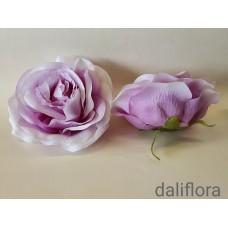 Didelis rožės žiedas. Spalva balta su violetine