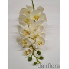 Dirbtinė orchidėja. Spalva balta