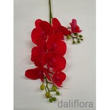 Dirbtinė orchidėja. Spalva raudona