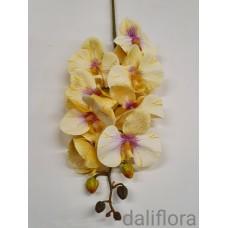 Dirbtinė orchidėja. Spalva gelsva