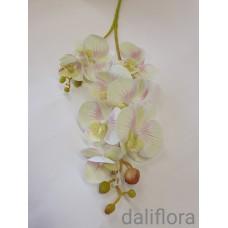 Dirbtinė orchidėja. Spalva žalsva