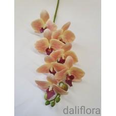 Dirbtinė orchidėja. Spalva pastelinė