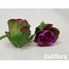 Rožių žiedai. Spalva ryškiai violetinė