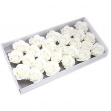 Muilo rožė. Spalva balta