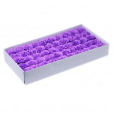 Muilo gvazdikas. Spalva violetinė-levandinė