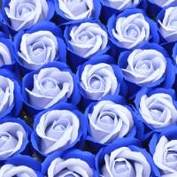Muilo rožė. Dvispalvė
